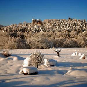 03.jardin en hiver