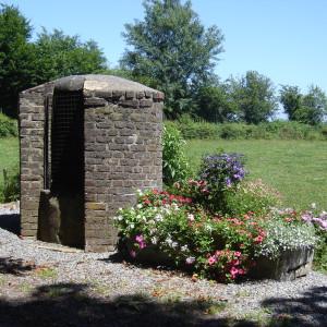 Jardin Gîte-été 2006 004
