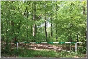 Gîte Hertogenwald10