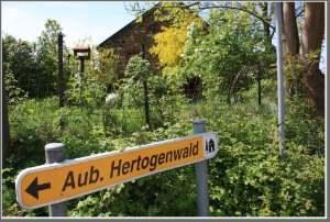 Gîte Hertogenwald6