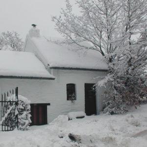 neige c